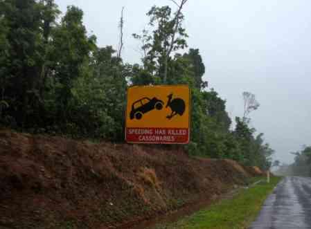Cassowary warning
