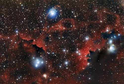 The glowing cloud Sharpless 2-296, part of the Seagull Nebula